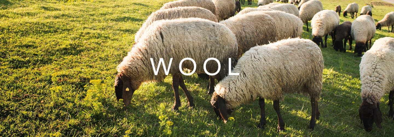 Wool of Avocado mattress
