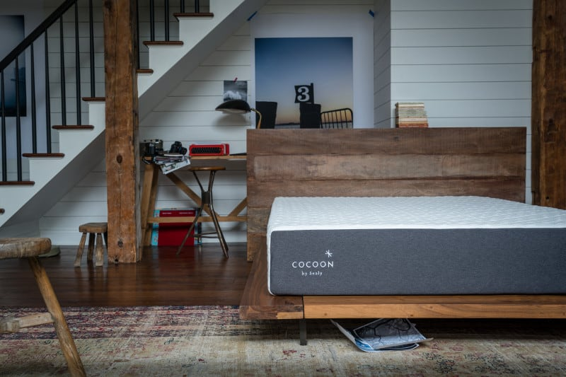 sealy cocoon mattress