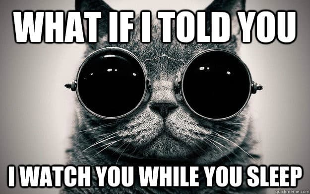 what if I told you I watch you while you sleep