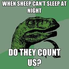 when sleep can't sleep at night, do they count us