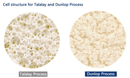 talalay vs dunlop process