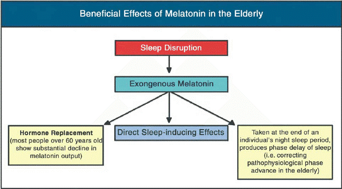 bebeficial effects of melatonin in the elderly