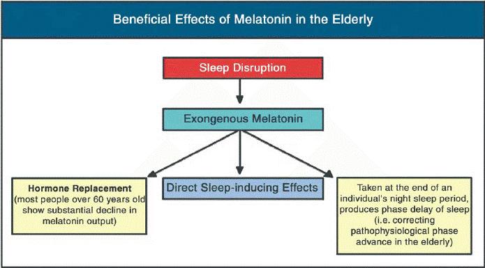 bebeficial effects of melatonin in the elderly