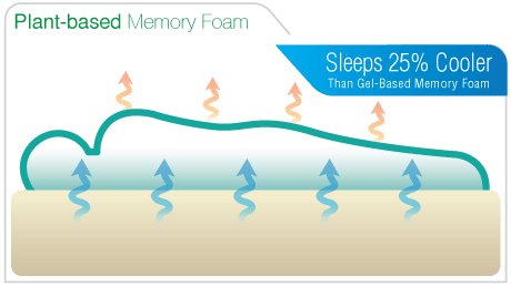 Plant-Based Memory Foam