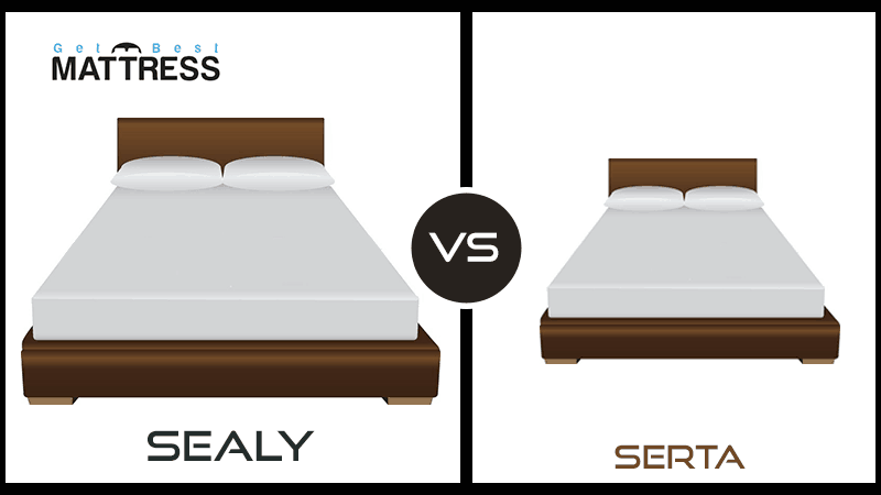 Sealy Vs Serta Options For Every
