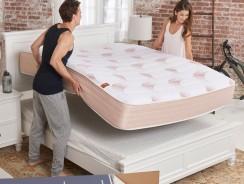 Pangea Bed Mattress Review